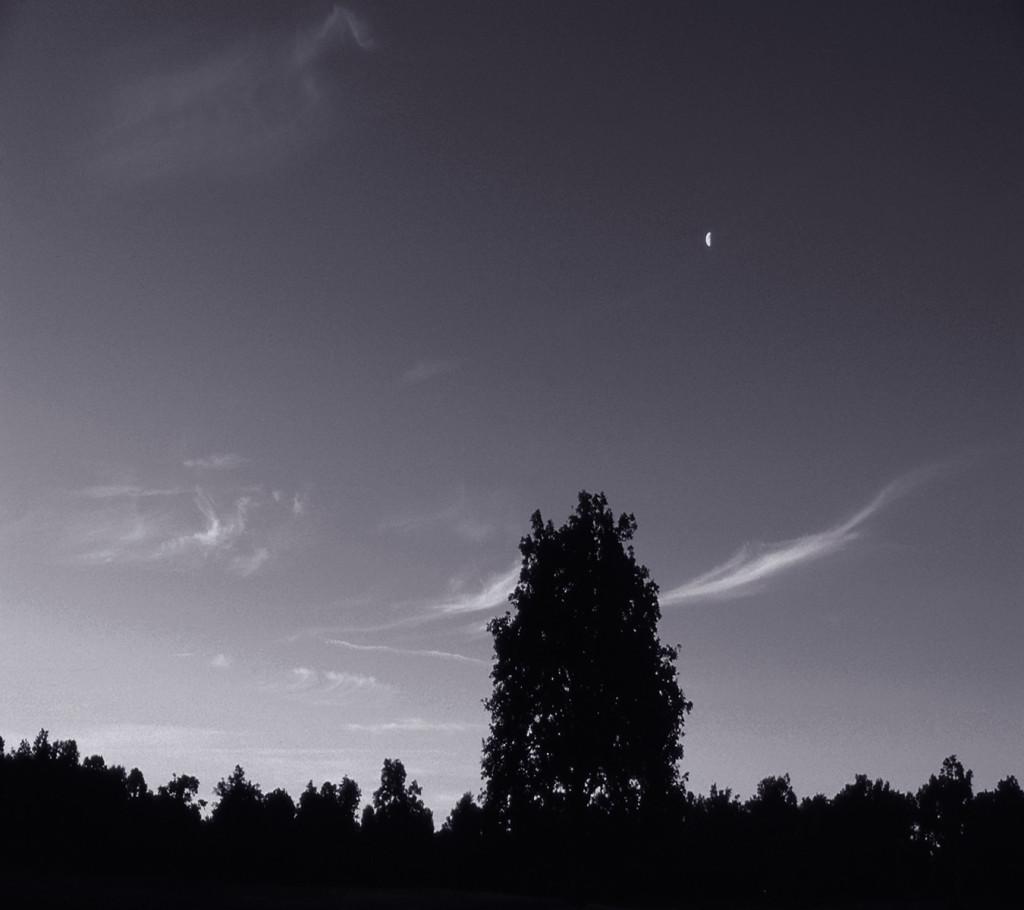 Upstate New York, Constellation Series